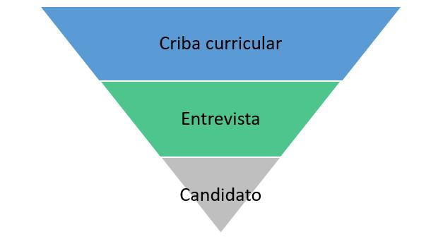 desarrollo_profesional_curriculum_exitoso